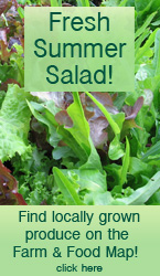 Fresh Summer Salad: Find locally grown produce on the Farm Map!