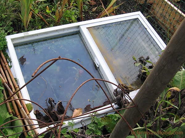 Cold frames will stand up to wind, rain and snow to provide warmth and protection for plants throughout the winter. Old windows are excellent choices for cold frame tops. Scrap wood, hay bales, large stones, or bricks make good materials for the frame.
