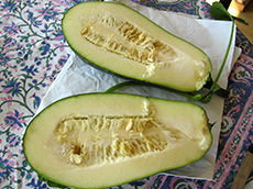 zucchini with seeds. Growing Your Own Garden Seeds.