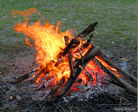 A campfire. Did cooking make us human?