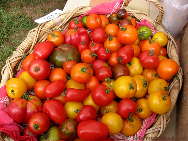 Ladysmith, Nanaimo & Gabriola Farms A-Z Directory. Tomatoes in a basket