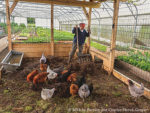 Profitable and Ecological Small-Scale Farming