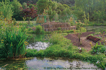 Ponds on the farm promote biodiversity. This is a model for profitable and ecological small-scale farming.