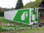 Video: Inside a Shipping Container Farm