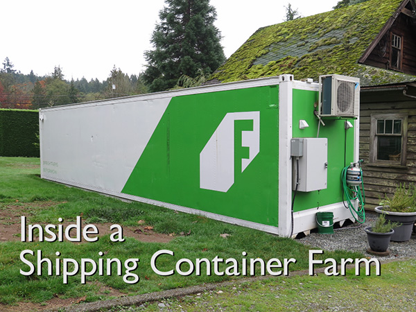 Inside A Shipping Container Farm Bc Farms Amp Food