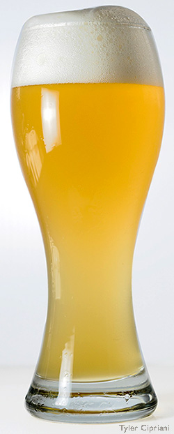 Glass of Beer. Oh No, Not the Beer: Barley, Hops, and the Future of Beer.