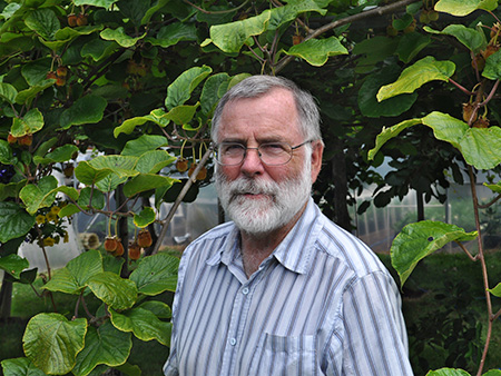 Bob Duncan of Fruit Trees and More stands amid his kiwi fruit.