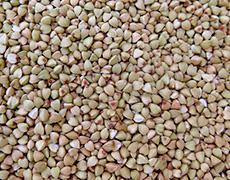 buckwheat groats, a source of gluten-free flour