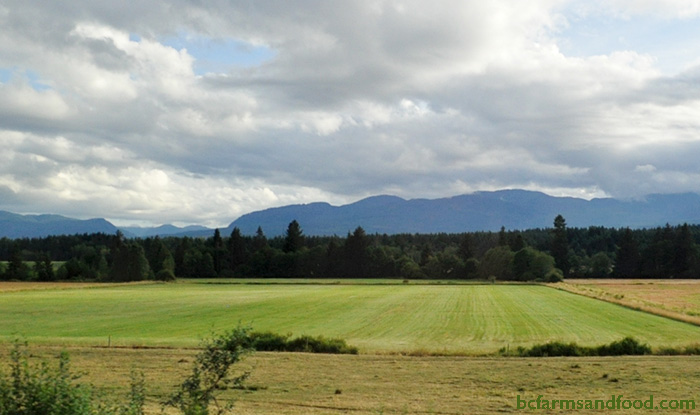 Farmland in BC. How We Can Regrow Sustainable Agriculture and Food Security in BC.