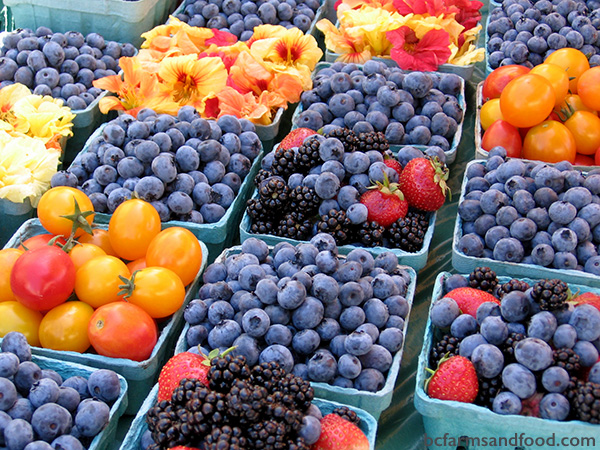 Cowichan Valley & Cobble Hill Farms A-Z Directory. Fresh fruit and berries