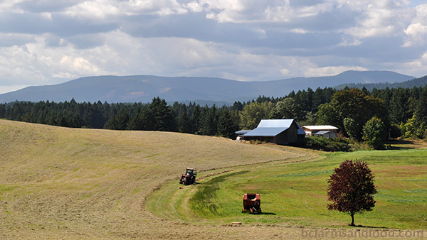 Cowichan Valley & Cobble Hill Farms A-Z Directory. View of a farm in Cowichan Valley.