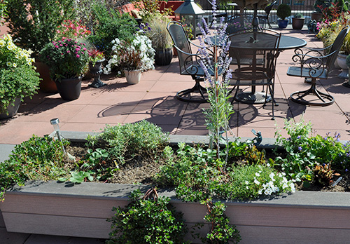 Strawberries and lettuce interplanted with ornamentals in a patio container garden.