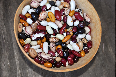 beans from Rebecca's garden