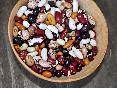 heritage dry beans from Rebecca's Garden
