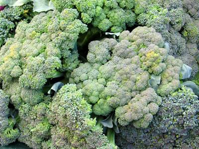 farm broccoli