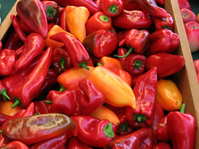 farm peppers1