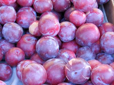 farm plums1