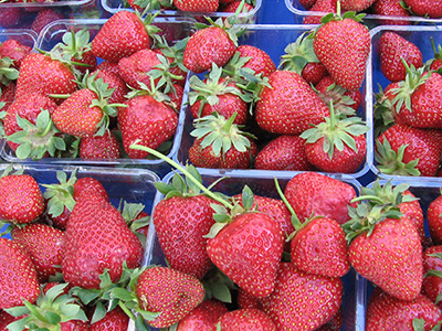 farm-strawberries