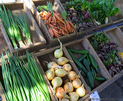 An array of fresh vegetables from the farm. Why farmland protection is not enough.