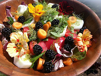 """A beautiful, colourful salad of greens, berries, vegetables and flowers fresh from the farm."""