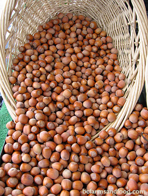 Hazelnuts are a local food you can eat all winter
