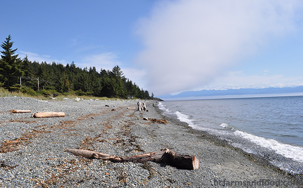 Metchosin Sooke Farms A-Z Directory. Beach in Sooke