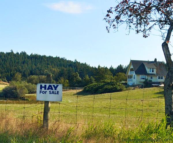 Metchosin Sooke Farms A-Z Directory. hay