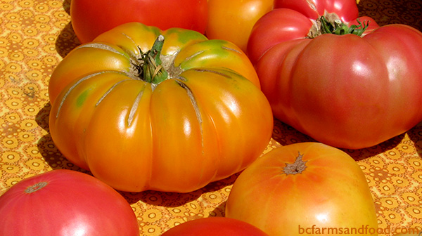 Parksville Qualicum Farms A-Z Directory. tomatoes