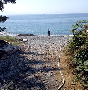 Jeff Abel uses a hose to pump up seawater from Gordon's Beach on Vancouver Island, harvesting sea salt.