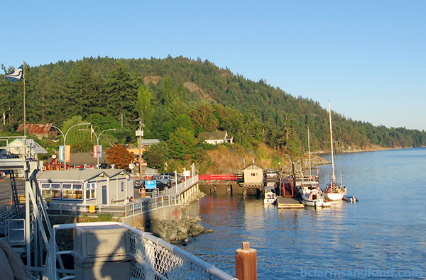 Salt Spring Island Farms A-Z Directory. View of Salt Spring Island from the ferry