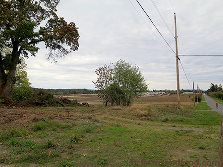 Land slated for Sandown Community Farm in North Saanich. How We Can Regrow Sustainable Agriculture and Food Security in BC.