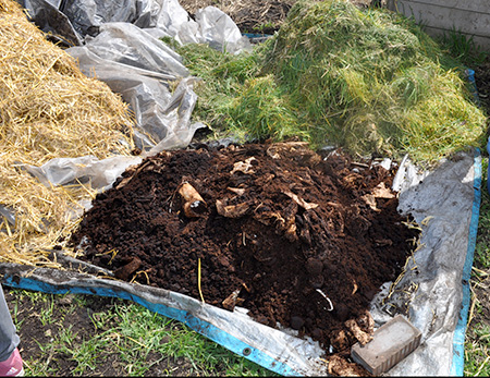 Straw, grass and coffee grounds for soil amendment - Three Simple Ways to Test Your Soil