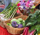 Can Local Agriculture Drive Economic Development?
