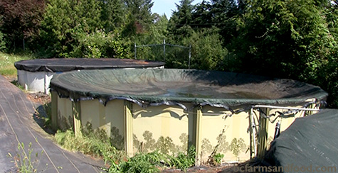Large plastic swimming pools used for water catchment. A Low-Carbon Citrus Greenhouse in Canada.