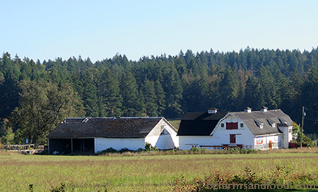Woodwynn Farms in Central Saanich, BC. How We Can Regrow Agriculture and Food Security in BC.